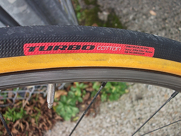 specialized turbo cotton clinchers